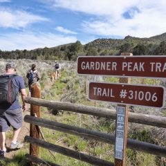 Hiking Gardner Peak