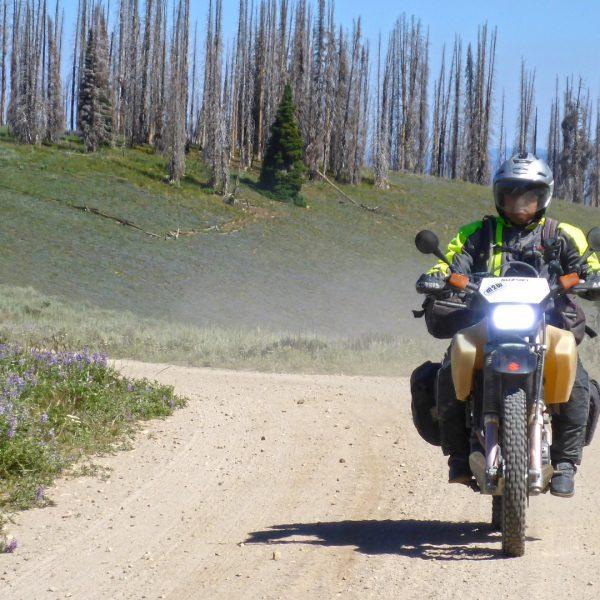 Brian on his Suzuki DR650