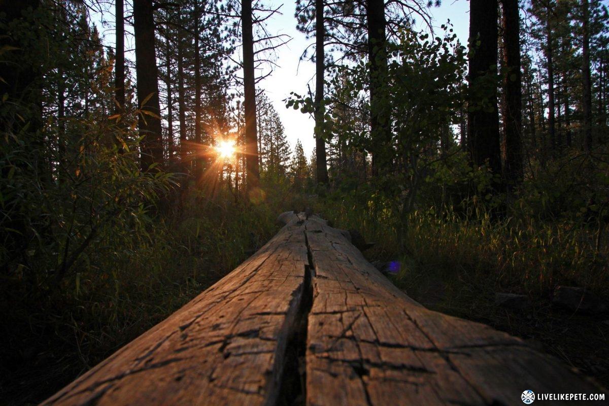 Mammoth Lakes Sherwin Creek Camp