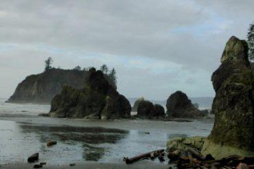Pacific Northwest Adventure