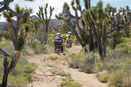 Slow Ride Into The Mojave Preserve