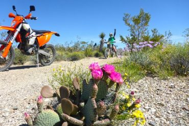Celebrating Earth Day on 2 Wheels